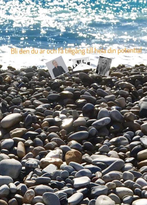 Skärmavbild 2017-02-07 kl. 10.05.51-2